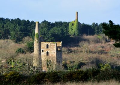 Wheal Friendly Turnavore